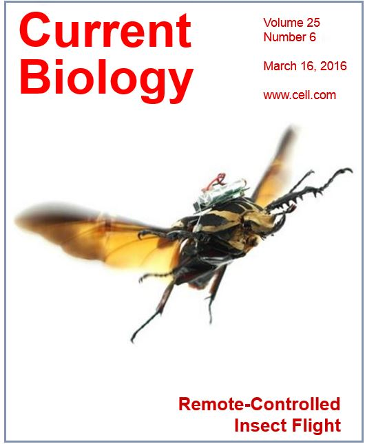Front cover of Current Biology