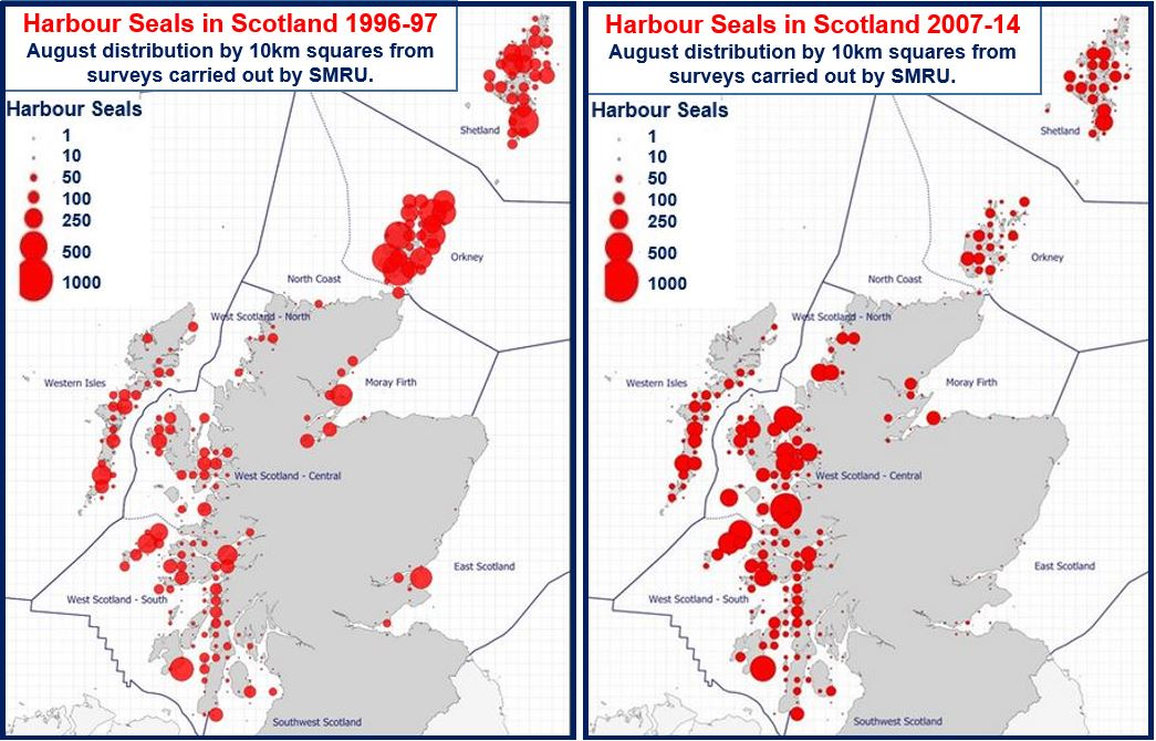 Harbour Seal distribution Scotland