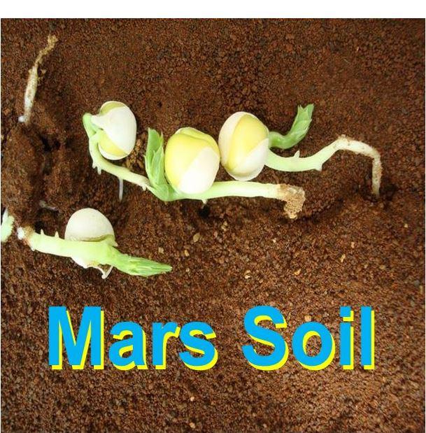 Mars soil good for growing vegetables