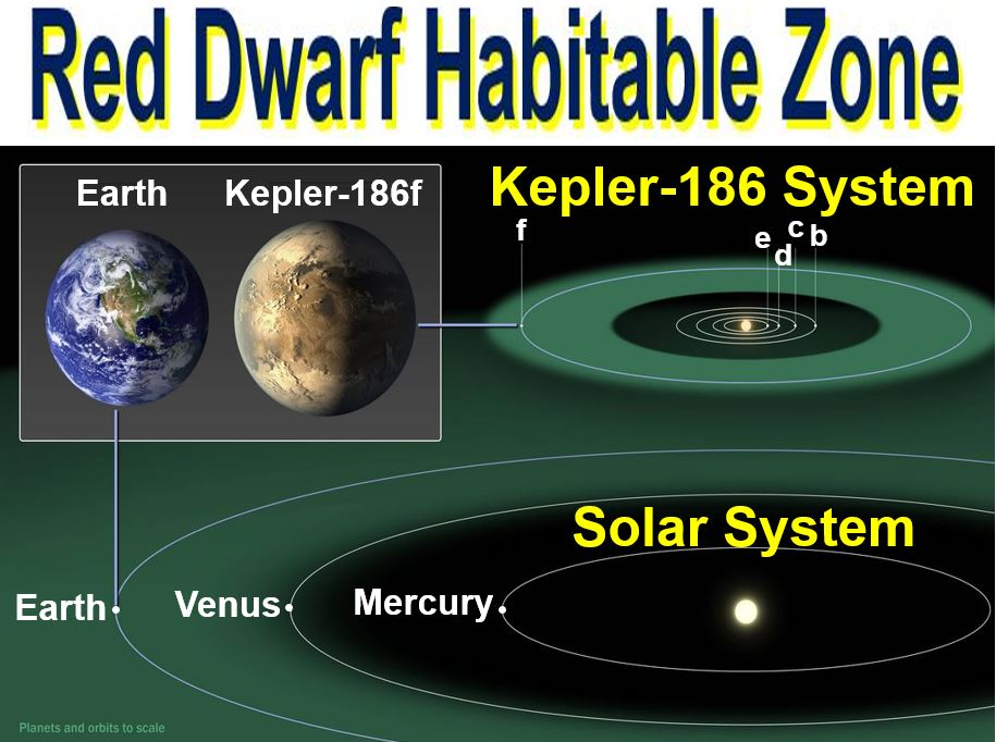 Red Dwarf Habitable Zone