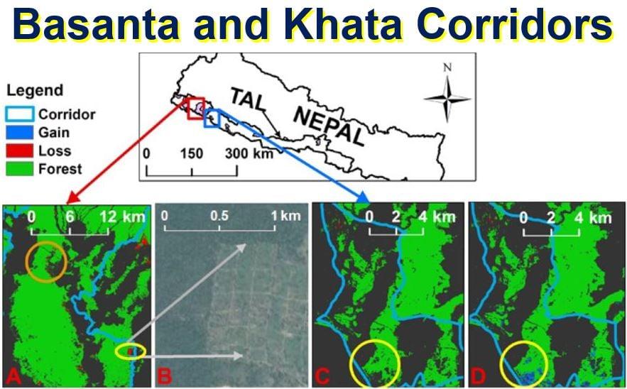 Basanta and Khata Corridors for wild tigers
