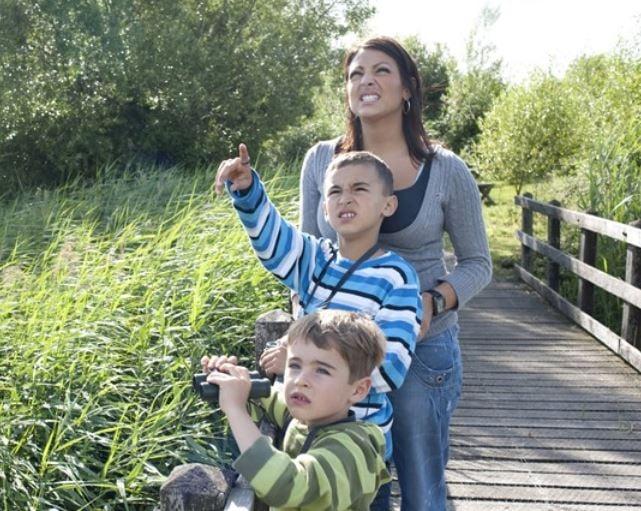 Family birdwatching