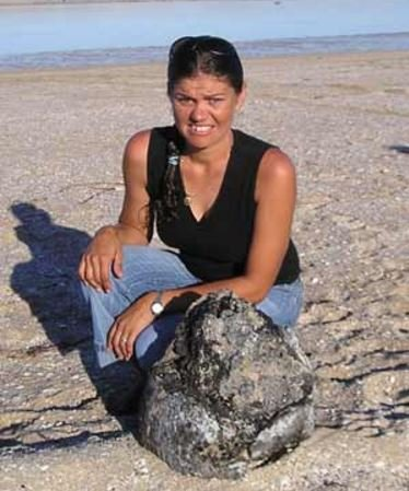 Huge ambergris find