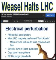 Weasel makes Large Hadron Collider stop working