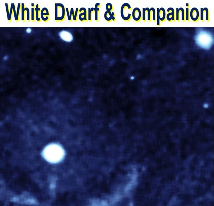 White dwarf and companion star