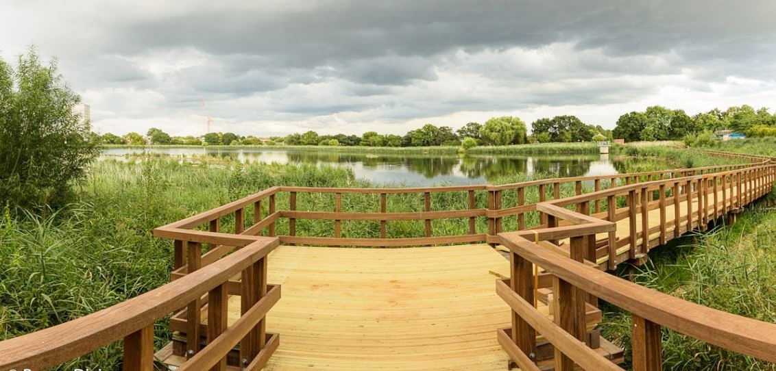 A haven for wildlife in London