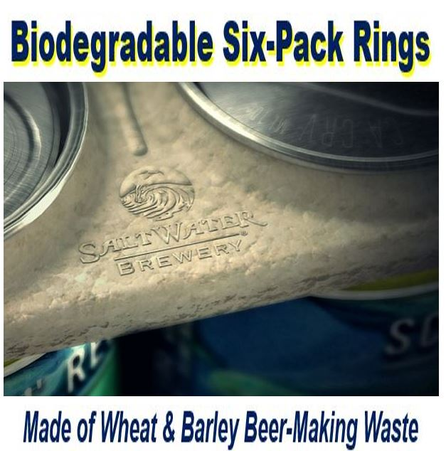 Biodegradable beer pack rings made of wheat barley