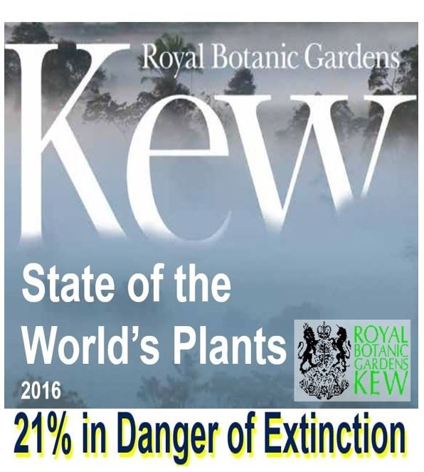 State of the plant species in the world