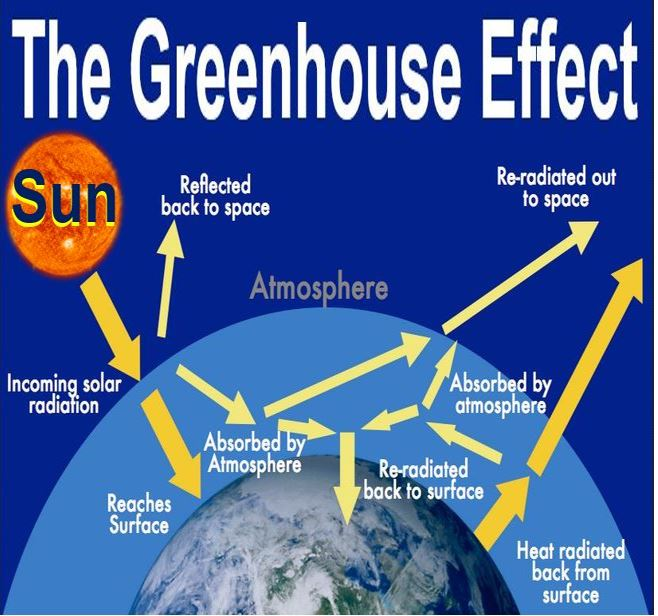 What Is The Greenhouse Effect  Causes And Examples