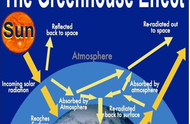 The greenhouse effect pic