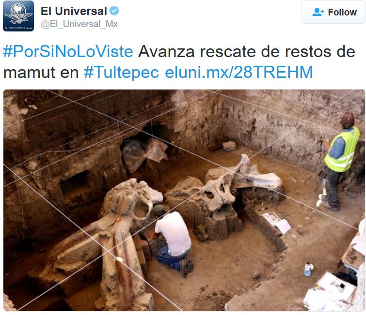 Mammoth bones discovered near Tultepec Mexico
