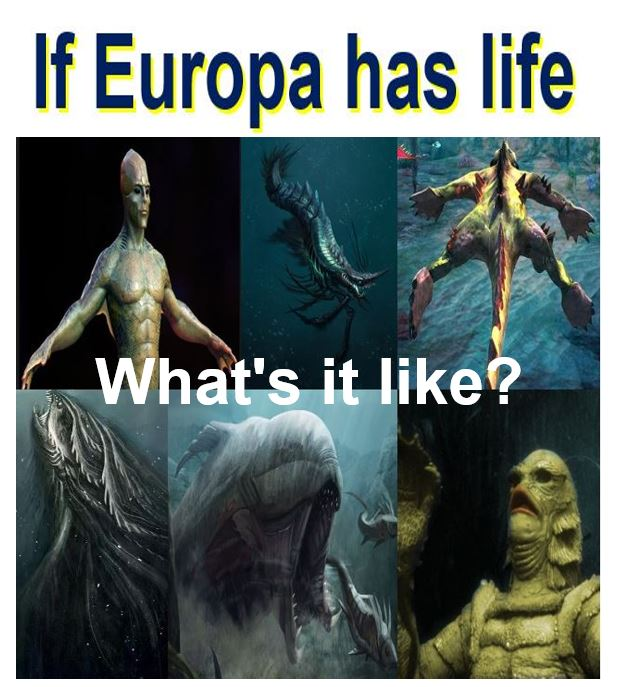 If Europa has life, what's it like?