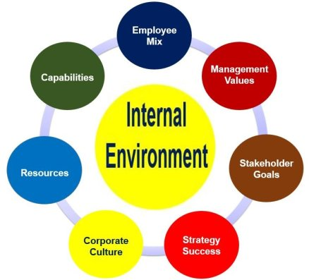What are environmental factors? - Market Business News