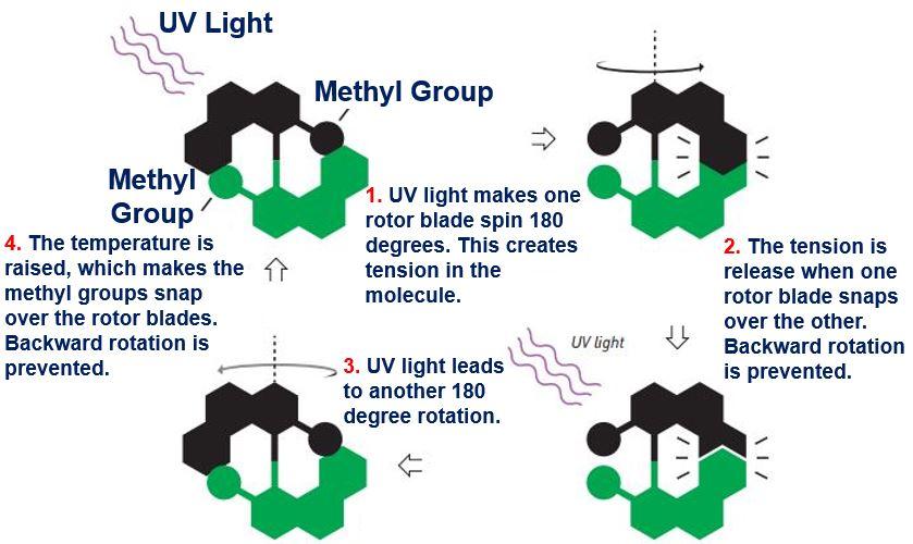 Nobel Prize in Chemistry 2016 molecular motor