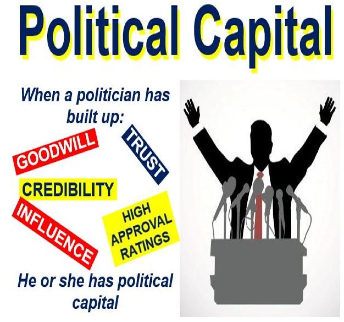Image result for political capital