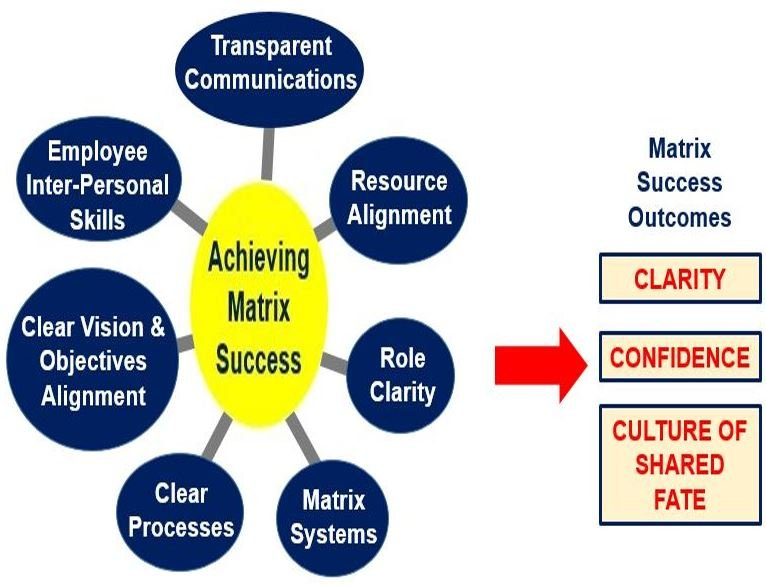Matrix organization success