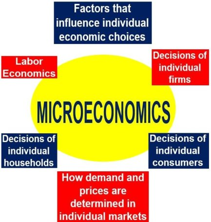 what are microeconomic factors