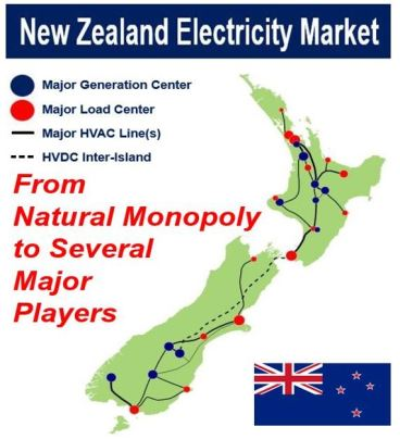 New Zealand Electricity - Natural Monopoly