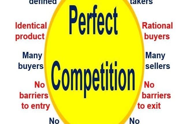 Perfect Competition