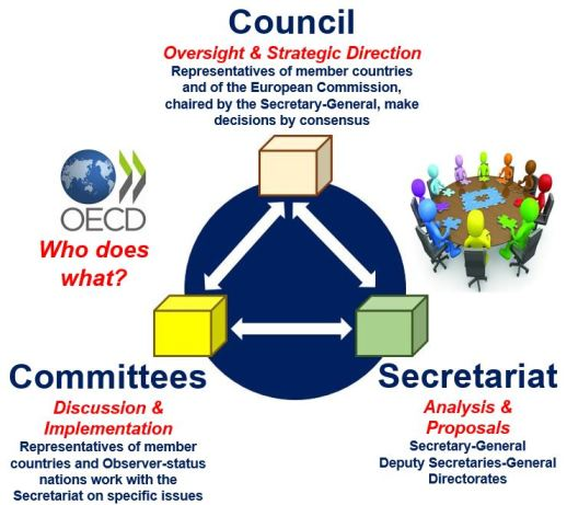 Who does what in OECD?