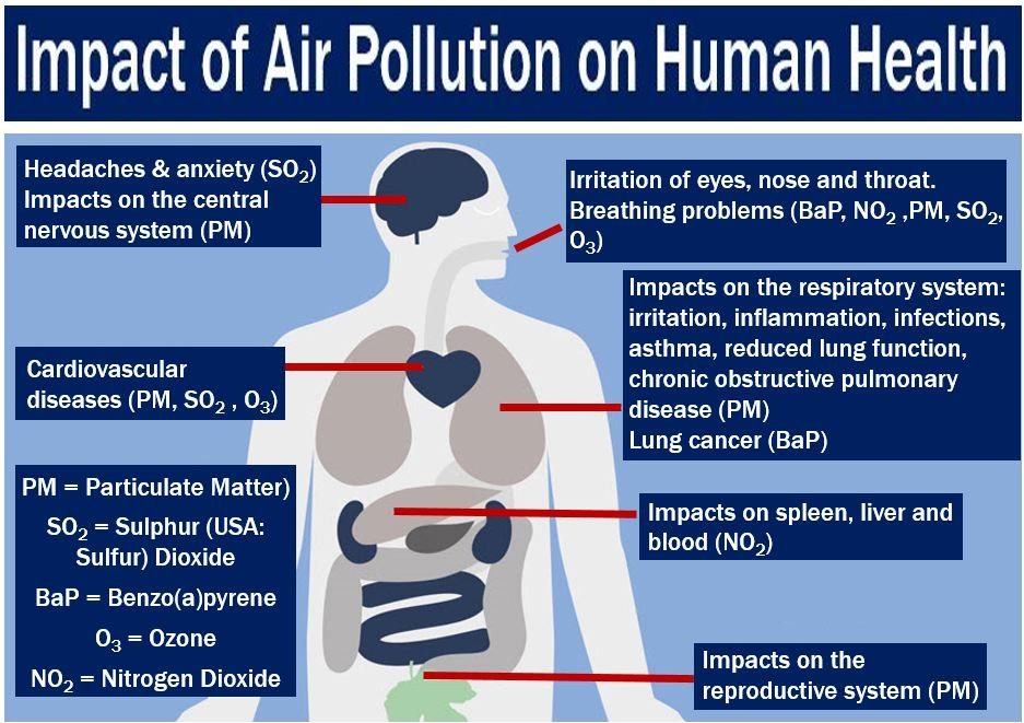 Impact of Air Pollution on Human Health