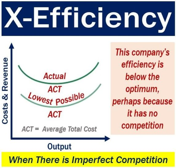 X-efficiency graph