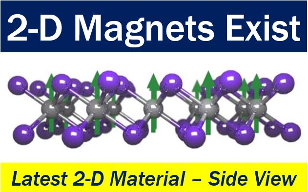 2-D Magnet - side view of 2-D material