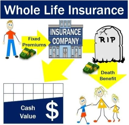 Whole life insurance - definition and meaning - Market Business News