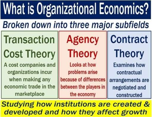 Organizational Economics - definition and subfields