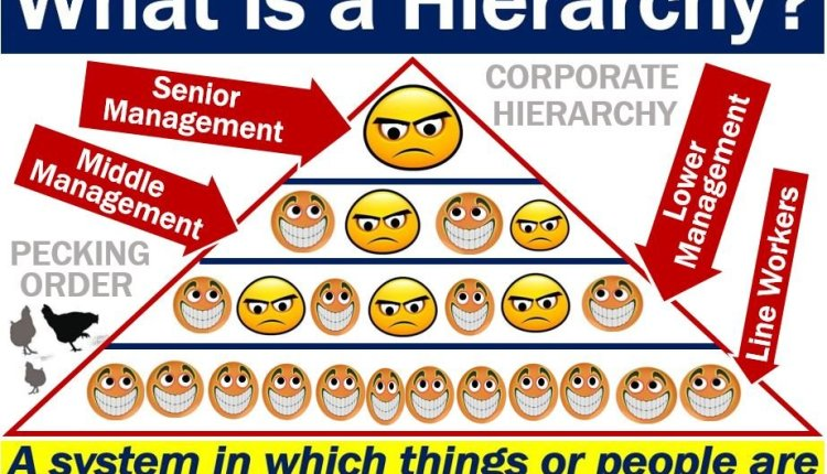 Hierarchy - definition and examples
