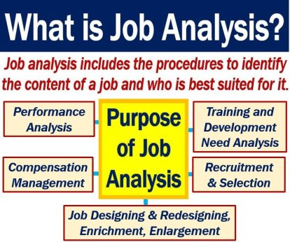 Job analysis definition and uses