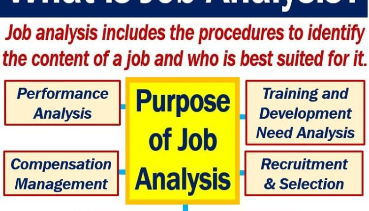 Job analysis - definition and meaning - Market Business News