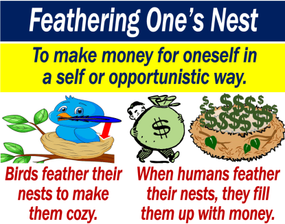 feather one's nest
