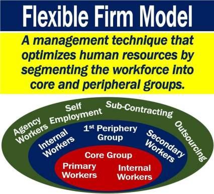 Flexible Firm Model