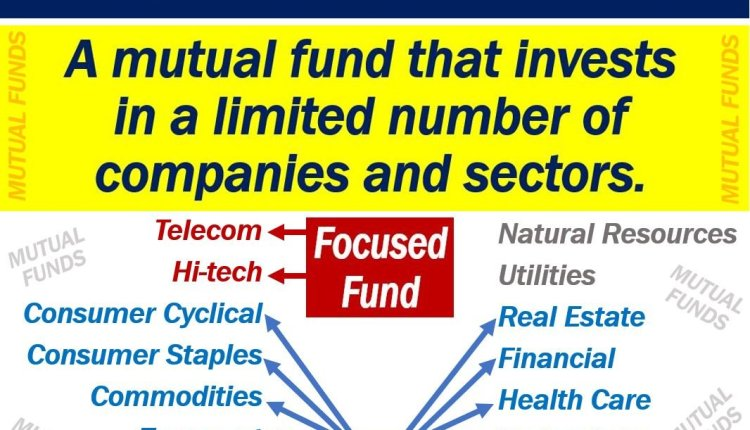 what is a focused fund? definition and examples - market business news