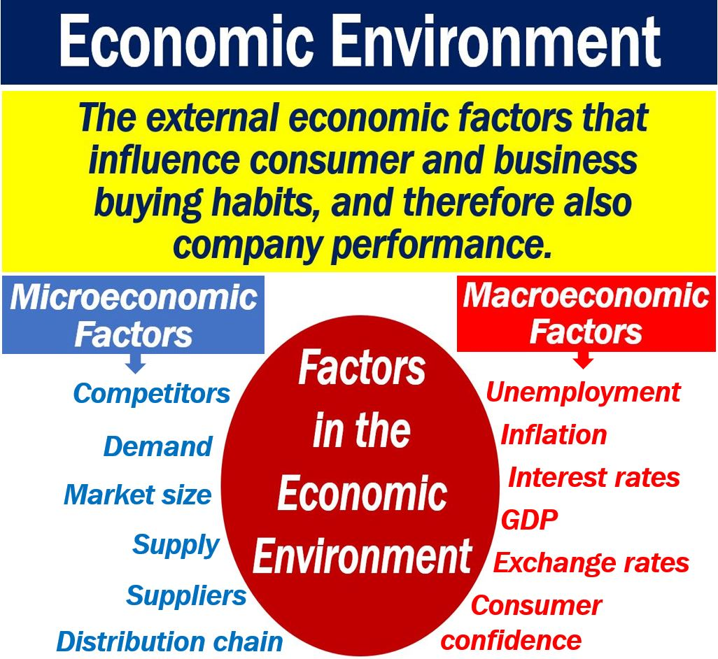 what is the economic environment? definition and examples
