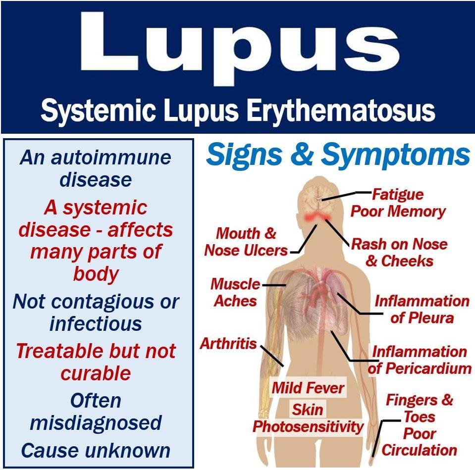lupus - photo #15