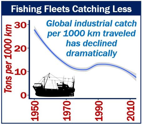Fishing Fleets Catching Less