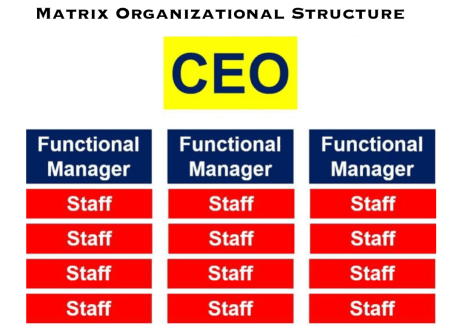 Matrix_Organizational_Structure