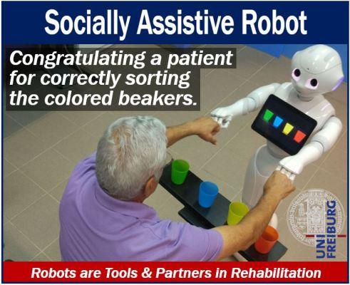 Socially Assistive Robots