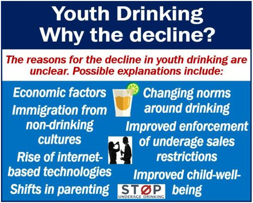 Youth drinking - explanations for the decline