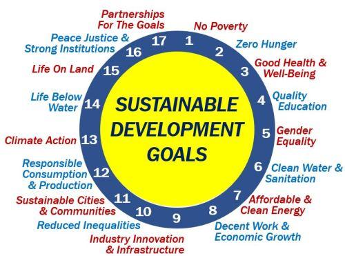 Seventeen Sustainable Develpment Goals