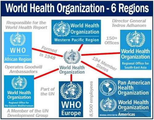 World Health Organization or WHO - six regions