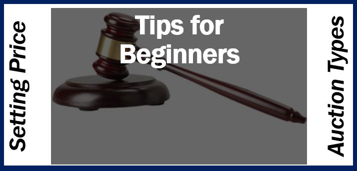 Auction Tips for Beginners