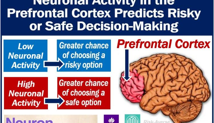 Neuronal activity and predicting risky decision-making