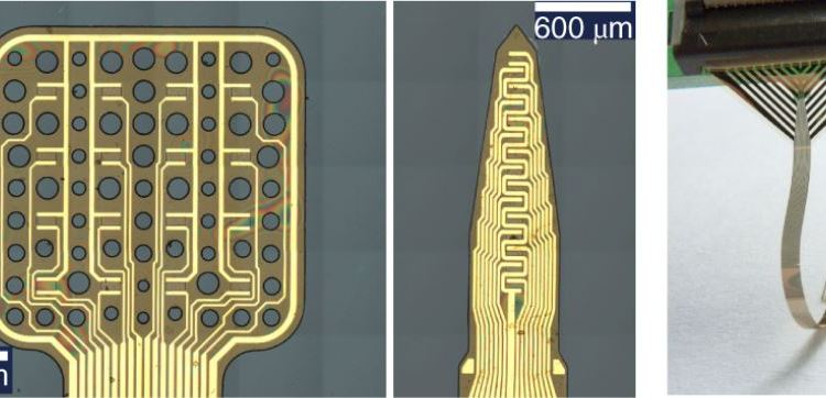 Graphene-Based Implant