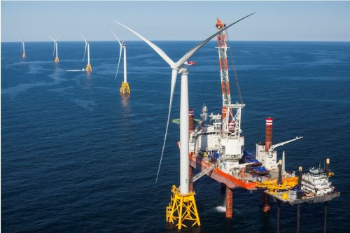 Offshore Wind Farm - Protect Wildlife article