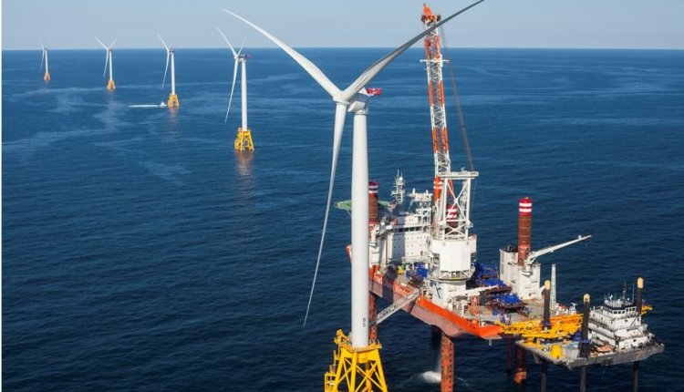 Offshore Wind Farm – Protect Wildlife article