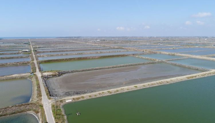 Tainan City Wind Energy Project – Image 1