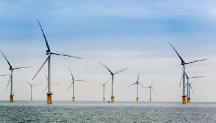Offshore wind energy capacity article – thumbnail